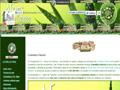 Cosmetica natural con aloe vera - Aloes de canarias